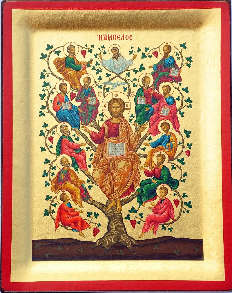 JESUS - VINE TREE -GC27 icon